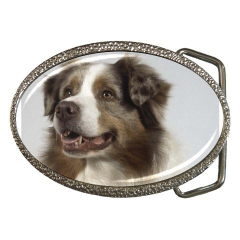 Australian Shepherd Dog  Belt Buckle  12102627