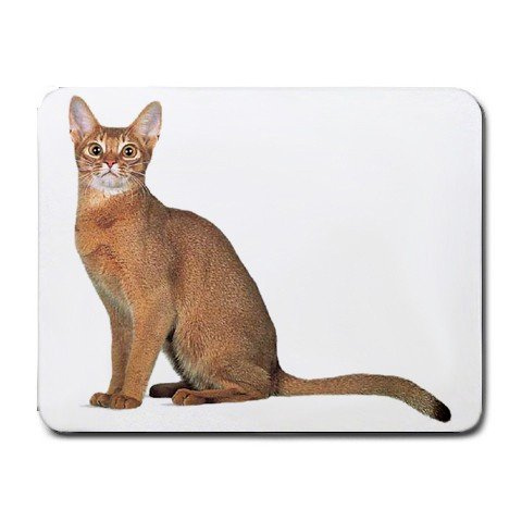 Abyssinian Cat Pet Lover Small Mousepad 12168362