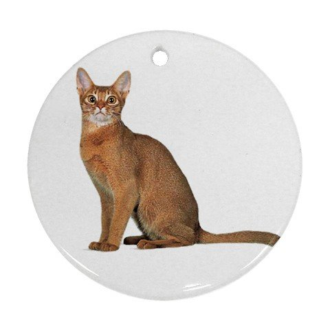 Abyssinian Cat Pet Lover Ornament Round 12168364