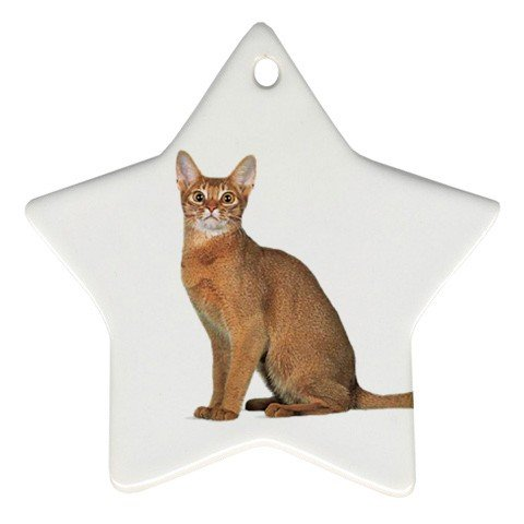 Abyssinian Cat Pet Lover Ornament Star 12168367