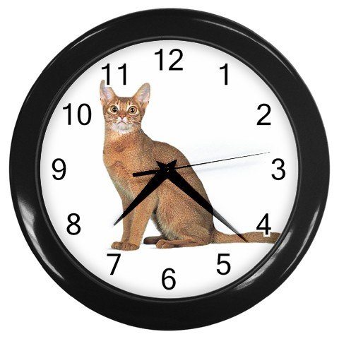 Abyssinian Cat Pet Lover Wall Clock Black 12168393