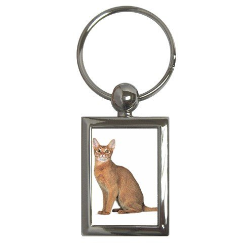 Abyssinian Cat Pet Lover Key Chain Rectangle 12168400