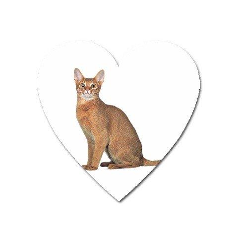 Abyssinian Cat Pet Lover  Magnet ( Heart ) 12168404
