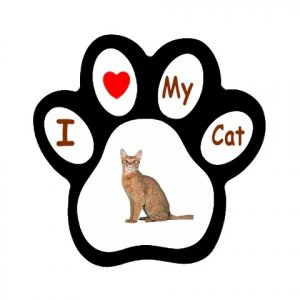 Abyssinian Cat Pet Lover Paw Print Magnet 12168406