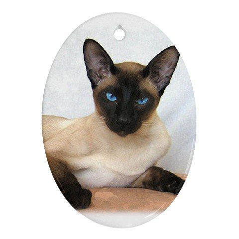 Siamese Cat Pet Lover Ornament Oval 12203168