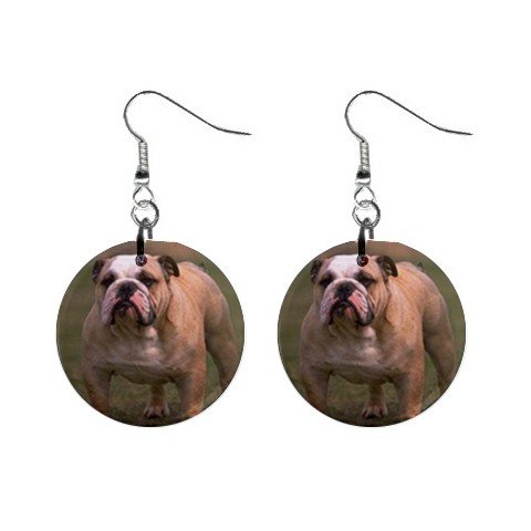 Bulldog Bull Dog Pet Lover Button Earrings Jewelry 12124824