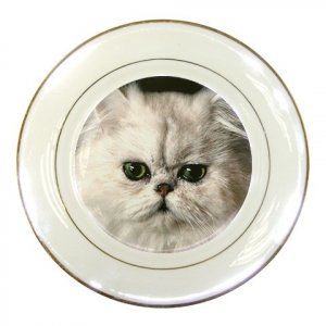 White Persian Cat Pet Lover Porcelain Plate 12201268