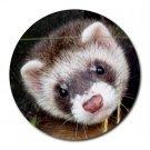 Ferret Pet Lover  Round Mousepad 17473593