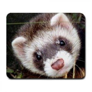 Ferret Pet Lover  Large Mousepad 17473601