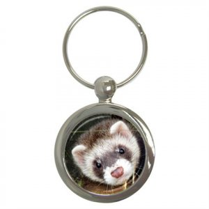 Ferret Pet Lover Key Chain Round 17473613