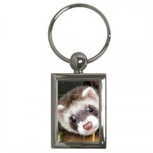 Ferret Pet Lover Key Chain Rectangle 17473614