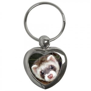 Ferret Pet Lover  Key Chain Heart 17473615