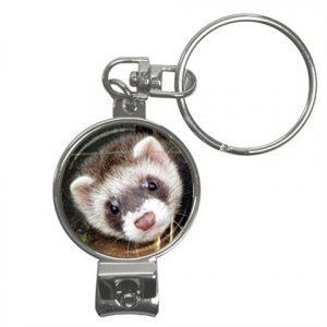 Ferret Pet Lover Nail Clippers Key Chain  17473616