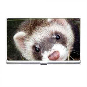 Ferret Pet Lover Business Card Holder Case 17473622