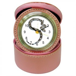 Boa Snake Jewelry Case Clock Pink Pet Lover  12240352