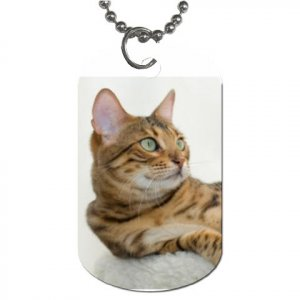 BENGAL CAT Pet Dog Tag Necklace Chain - 20034212
