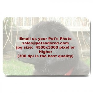 YOUR Custom Pet Photo Large BATHMAT OR  DOORMAT indoor outdoor