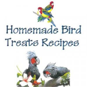 Homemade Bird Treats Recipes 10 Recipes Wild or Domestic Birds