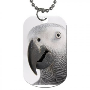 AFRICAN GREY Bird Pet Lover Dog Tag Necklace Chain 17476855