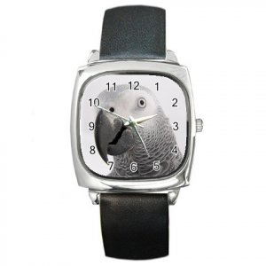 AFRICAN GREY Bird Pet Lover Square Metal Watch Unisex 17476860