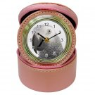AFRICAN GREY Bird Jewelry Case Clock Pink Pet Lover  17476864 PAEC