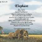 ELEPHANTS, Africa - PERSONALIZED 1 Name Meaning Print
