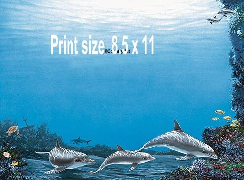 DOLPHINS #5 - PERSONALIZED 1 or 2 Name Meaning Print  - no US s/h fee