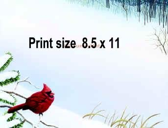 Winter CARDINAL - PERSONALIZED 1 Name Meaning Print  - no US s/h fee