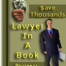 Lawyer in a Book on a CD With Full Resale Rights Included