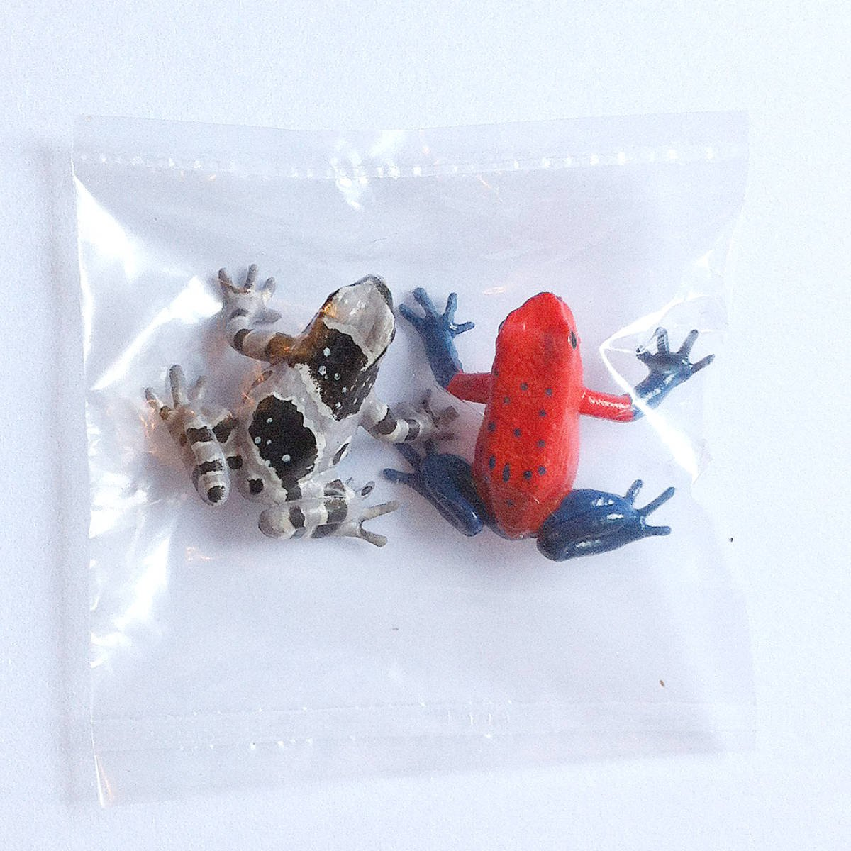 Primary Colors Amphibian Frog Picture Book - Strawberry Poison Dart Frog & Amazon Milk Frog - Yujin