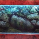 Aqua Bella 41 inch wall mount aquariums