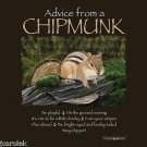 Chipmunk T-shirt Unisex S M L XL 2XL NWT Rodent Forest Fun Advice Earth Sun Moon