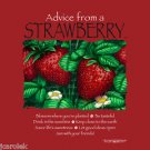 Advice from a Strawberry T-shirt Earth Sun Moon Farm Fruit S M L XL XXL New  NWT