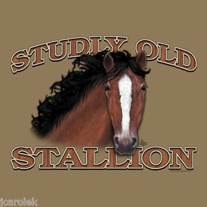 Adult T Shirt Unisex Stallion Small NWT Horse Beige Gildan Short Sleeve Cotton