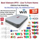 Vietnamese Internet Tv, 100 Channels, Lifetime Free Watching, IPTV Android Box
