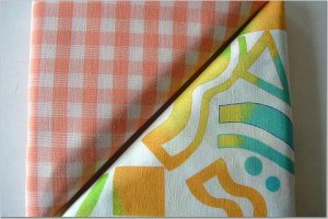 Orange Gingham n' Crazy Neon Print - TWO Fat Quarters (2874)