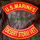 U.S. Marines Desert Storm Vet Embroidered Military Patch Set Sew on Patches for