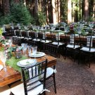 """12""""x20' Real Moss Runner rustic display chic shabby settings bouquet natural outdoor fairy woodland"""