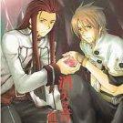 Crimson | Tales of the Abyss Doujinshi | Asch x Luke Fon Fabre