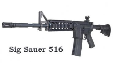 Sig Sauer 516 Carbine Convertible CO2 Airgun Rifle