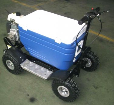 49cc Gas 4 Stroke Cooler Tailgate Party Mobility Scooter GAS