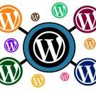 Wordpress Multisite Network Installation Service