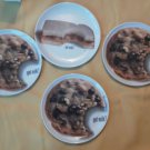 Set of 4 Got Milk? Cookie Peanut Butter Jelly Sandwich 1999 Melmac Plate Lot NEW