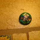 Large plastic button with ocean fish.