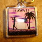 Hawaii picture metal key chain.