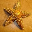 Large gold tone metal button in shape of sea star.