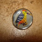 Medium metal button with colorful woodpecker bird.