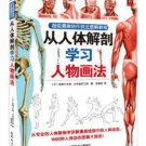 From Human Body Anatomy Learn Figure Painting  (Chinese Edition)