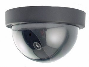 Dome Dummy Camera with Motion Activated Light