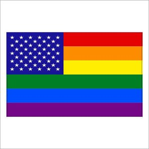 Gay Pride Rainbow USA America Flag Vinyl Decal / Sticker